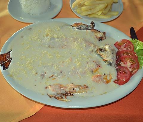 Trucha al Ajillo